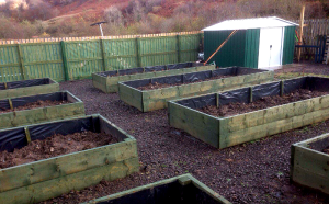 Glenshellach Growers will create more raised beds.