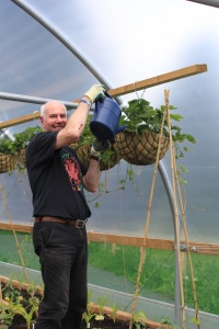 Ian watering plants in a hanging basket at Tayport Community Trust's community garden