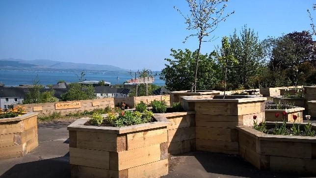 Belville Community Garden Trust's garden on a sunny day