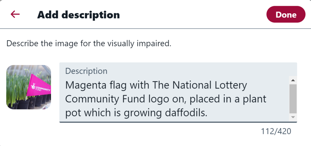 An example of an image description on Twitter which says 'Magenta flag placed in a plant pot which is growing daffodils'.