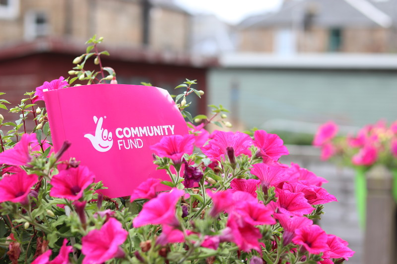 National Lottery Community Fund branded flag among some pink flowers